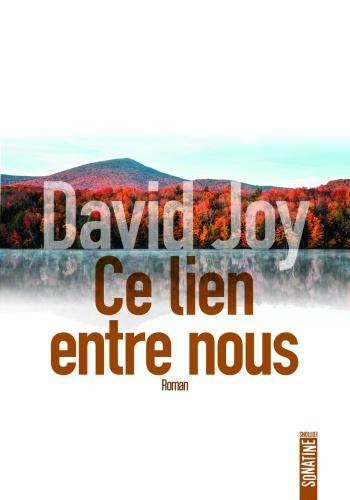 D. Joy - Ce lien entre nous